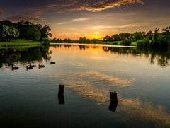 Another Day (Dean Whitehurst) Tags: canon canon1022mm sunset ducks lakes chesapeakevirginia deanwhitehurst dusk availablelight thegoldenhour clouds reflectionsinwater evening virginia sky landscapes light nature reflections unitedstates water