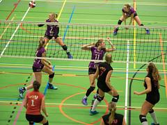 1B260923 (roel.ubels) Tags: vv utrecht eurosped galgewaard volleybal volleyball 18 finale nationale beker