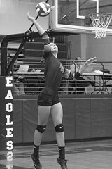 IMG_2436-02 (SJH Foto) Tags: golden budda by clive cussler part 25 serve burst mode black white blackandwhite bw monocolour girls volleyball high school northstar holy redeemer team teen teenager