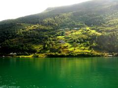 Verde que te quiero (mnovela2293) Tags: flam noruega fiordos verde camos de cultivo niebla europa escandinavia
