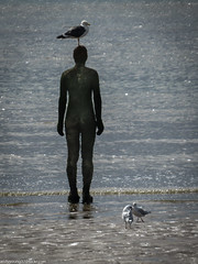 Formby beech & Gormley statues (32 of 71) (andyyoung37) Tags: sea silhouette reflections anotherplace gormleystatue crosbybeech