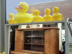 (Jean-Luc Lopoldi) Tags: jaune toys junk furniture reflet buffet occasion brocante meubles canards