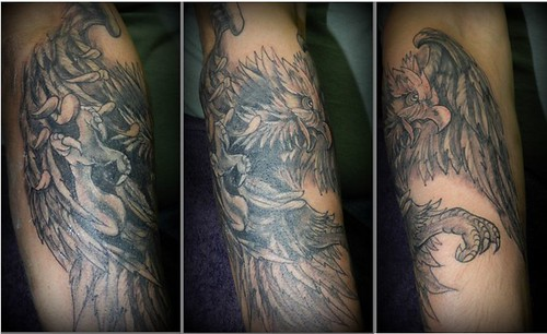 eagle cover up