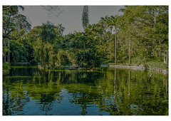 Parque (oniles) Tags: park lake tree green reflexion