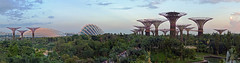 Gardens by the Bay (brentflynn76) Tags: travel trees panorama architecture garden bay singapore dusk scenic panoramic dome supertrees
