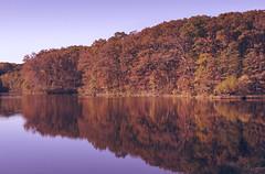Shimek Forest (L. Paul) Tags: statepark sky lake color reflection fall water leaves iowa farmington shimekforest