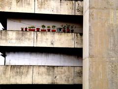 _DSC4233 (Parritas) Tags: street city streetart eye lost hope graffiti justice calle faith poor napoli napoles mafia scuola libert pobreza secondigliano arteurbano camorra scampia