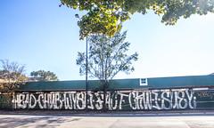 HEAD CHUB WYSE FACT CKUE SUEY (Rodosaw) Tags: street chicago art photography graffiti head culture chub documentation suey d30 fact subculture wyse of ckue