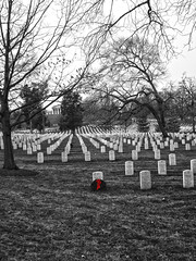 Arlington National Cemetery (lukedrich_photography) Tags: us usa washington dc washingtondc capitol arlingtonnationalcemetery cemetery military veteran soldier sailor marine airman virginia nationalregisterofhistoricplaces wreath arlingtonhouse grave remembrance georgewashingtonparkecustis armedforces hdr sony dscw55 sonydscw55 semimonochrome va unitedstates unitedstatesofamerica america الولاياتالمتحدة vereinigtestaaten アメリカ合衆国 美国 미국 estadosunidos étatsunis northamerica
