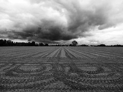 P1000001x (gzammarchi) Tags: italia paesaggio natura pianura campagna ravenna borgomontone campoarato nuvola bn traccia explore