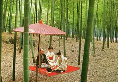 Tea ceremony and Bamboo woods (YukinoHanaJP) Tags: postcard japan kimono tea kyoto city view postcrossing traditional dress umbrella