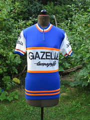 Gazelle1 (akimbo71) Tags: cycling jersey maglia maillot fahrradtrikot pro team equipe