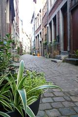 Rue Beauregard (Liège 2016) (LiveFromLiege) Tags: liège liege luik lüttich liegi lieja belgique wallonie ruebeauregard architecture city belgium archilovers architecturelovers リエージュ льеж
