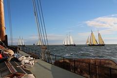 Klipperrace (Jensje) Tags: netherlands niederlande ijsselmeer klipperrace 2016 blue wind sunshine sailing zeilen segeln classic broedertrouw