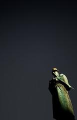 Don't be imperious (Sten Dueland) Tags: alexander kielland statue stavanger alexanderkielland kjelland aleksander author forfatter