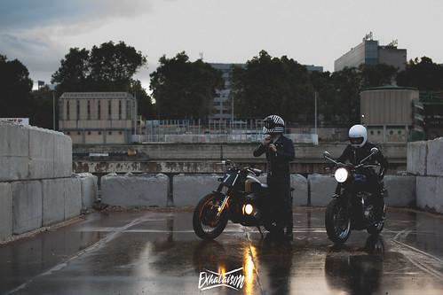 Roars©exhalaison.jpg