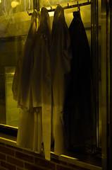 Biologie-Garderobe (dcs 0104) Tags: biologie garderobe wardrobe biology kittel white weis weiss plfanzen plants planten fleur flora nikon d5100 nikkor 18 35mm g dx