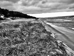 Lake Michigan, Hoffmaster State Park (Dennis Sparks) Tags: sanddunes beach michigan lakemichigan hoffmasterstatepark blackwhite olympusem10