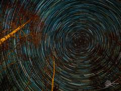Star Trail (akphotograph.com) Tags: stars star trails startrails alaska nightphotography longexposure livecomp