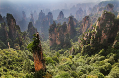 zhangjiajie National Park - Hunan - China (Rogg4n) Tags: china canoneos100d iconic hills nature zhangjiajie nationalpark avatar pandora hunan peak summit forest mountains landscape travel asia panorama 中国 rock efs18135mmf3556isstm sky clouds peaks pine 湖南 张家界