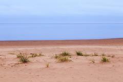 Minimalistic (Olli Tasso) Tags: minimalistic grass sand beach sea yyteri pori suomi finland shore landscape scenery maisema seascape overcast cloudy water longexposure
