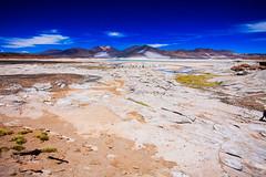 Chile 2013-2814 (sebtac) Tags: chile2013 chile 2013 outdoor reservanacionallosflamencos
