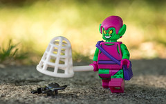 Catching Spiders (Reiterlied) Tags: 105mm d5200 dslr germany goblin green greengoblin hamburg lego legography lens macro minifig minifigure nikon photography prime reiterlied sipgoeshamburg2016 sigma spider stuckinplastic toy trap