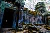 Iridescent (Arbron) Tags: cambodia taprohm asia2015 rajavihara siemreap temple ប្រាសាទតាព្រហ្ម រាជវិហារ krongsiemreap kh