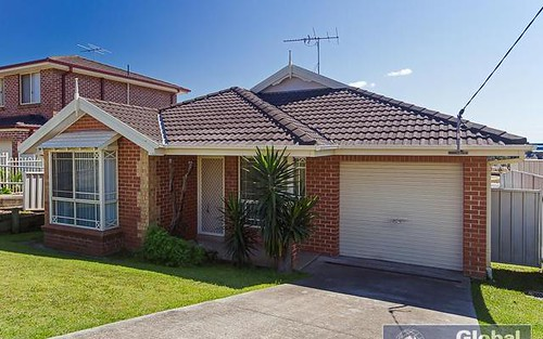 66 Crebert St, Mayfield NSW 2304