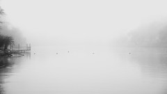 white (Darek Drapala) Tags: lumix light landscape white bw blackwhite blackandwhite warsaw warszawa water waterscape panasonic poland polska panasonicg5 nature skaryszewski