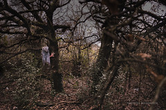 Woodgate Valley Country Park (Veroniiika B) Tags: conceptual nikon experimental creepy dark woods forest park trees blood red hands clothes scarf scary mistery misterious surreal surealism