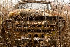 Angry Stare (cjb_photography) Tags: junkyard mcleansautowreckers miltonon rust truck