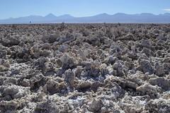 Salar de Atacama (monto84) Tags: amrica amricadelsur chile desiertodeatacama fotografapaisaje regindeantofagasta reservanacionallosflamencos salardeatacama