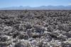 Salar de Atacama (monto84) Tags: américa américadelsur chile desiertodeatacama fotografíapaisaje regióndeantofagasta reservanacionallosflamencos salardeatacama