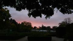 Une promenade dominicale au Jardin des Plantes - Soleil couchant (jeanlouisallix) Tags: rouen seine maritime haute normandie france jardin parc park garden arbres nature paysage landscape panorama soeil couchant sunset