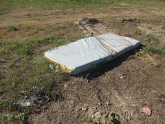 rode the mattress (TMQ.st.louis) Tags: mattress trash litter garbage abandoned bed field mud weed trashbit