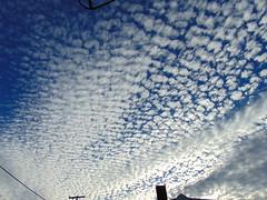 DSC01229 (StormJunkie2015) Tags: clouds sky weather skies altocumulus cumulus alto meteorology