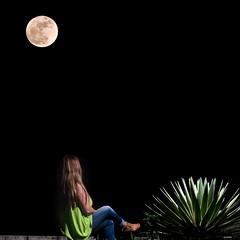 Super moon (enfoquemos) Tags: sanlorenzo visitpuertorico puertorico super moon supermoon