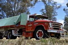 Wrights (quarterdeck888) Tags: trucks transport semi class8 overtheroad lorry heavyhaulage cartage haulage bigrig jerilderietrucks jerilderietruckphotos nikon d7100 frosty flickr quarterdeck quarterdeckphotos roadtransport highwaytrucks australiantransport australiantrucks aussietrucks heavyvehicle express expressfreight logistics freightmanagement outbacktrucks truckies truckshow truckdisplay australiantruckshows castlemaine castlemainetruckshow castlemainetruckshow2016 inter internationalharvester ab mcgrath strapbogie flattop singledrive wrights olddays