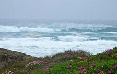 An der Praia Castelejo (fotoculus) Tags: portugal algarve algarvereisemrzapril2013 praiacastelejo frhling meer see atlantik wellen brandung gischt