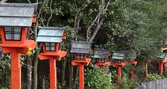Nachi path to Grand Shrine 3 (Geoff Buck) Tags: japan shrine sacred buddhism buddhist temple buidling tree kumanokodo kumano nachi nachisan shinto worldheritagesite pilgrim pilgrimroute history worship statue statues carvings flags altar