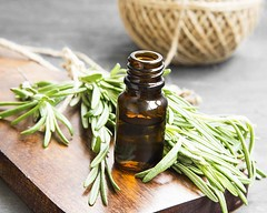 L'huile essentielle pour la beaut de vos  cheveux (ArganHYSBIO) Tags: candid dieting scented herbalmedicine organic cooking aromatherapy cookingoil choice freshness greencolor glassmaterial healthcareandmedicine rosemary herb spice leaf plant food bottle essential mediterraneanculture