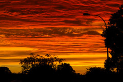 Fire in the sky (red snapper 205) Tags: sunset colour red orange pink yellow color sun dusk evening silhouette suburbs urban explore