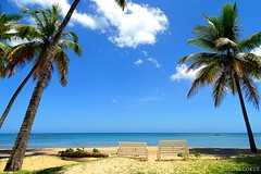 Place to relax (Madlin Gökçe) Tags: paysage palm palmiers photo sky summer sea sun sand sable sunny soleil seascape sonydschx400v outside arbres agua arbol blue beach ciel clouds côte caraibes couleurs colors dominicana day extérieur eau été ensoleillé elverano holidays image landscape littoral lasterrenas lumière light madlingökçe mer nuages océan plage palmier playa aqua rivage republicadominicana trees sunlight vacances water white herbe bancs ship bâteau tronc tropical arbre