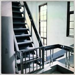 Super steep staircase (Annabel Pretty) Tags: elijah robusta standard