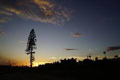 sunset (ddsnet) Tags: sunset sky cloud sun home sunrise sony  resolution   ilc       mirrorless interchangeablelenscamera ilce7rm2 7rii