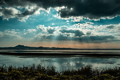 PhoTones Works #7065 (TAKUMA KIMURA) Tags: light sea lake nature japan landscape scenery halo 日本 自然 海 風景 shaft okayama kimura 光 景色 湖 岡山 takuma 琢磨 光芒 木村 後光 photones fz1000