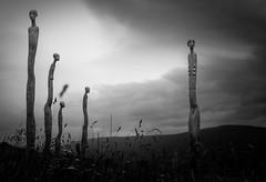 (Svein Skjåk Nordrum) Tags: light blackandwhite bw sculpture white black noir installation nero flokk sørfron gittedæhlin