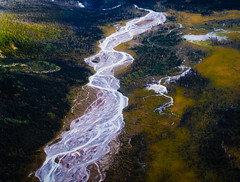 Braided River (Roantrum) Tags: usa alaska copperriver wrangellsteliasnationalpark roantrum