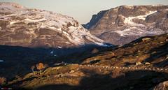 A good Morning in the Mountains... (bent inge) Tags: snow fall norway sunrise telemark haukeli vinje haukelifjell norwegianmountains bentingeask